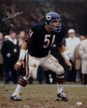 Dick Butkus Autographed 16x20 Color Standing Photo- JSA W Authenticated