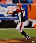 Andy Dalton Autographed Cincinnati Bengals 16x20 Passing Photo- JSA W Auth