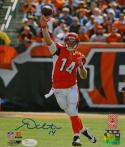 Andy Dalton Autographed Cincinnati Bengals 8x10 Passing PF. Photo- JSA W Auth