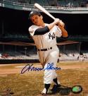 Moose Skowrone Autographed 8x10 NY Yankees Batting Stance Photo-MLB Auth