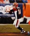 Andy Dalton Autographed 16x20 Bengals Passing Photo- JSA Authenticated