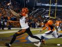 A.J. Green Signed Cincinnati Bengals 16x20 Reaching For Pass Photo- JSA W Auth